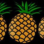 pineapple-ananas-pv
