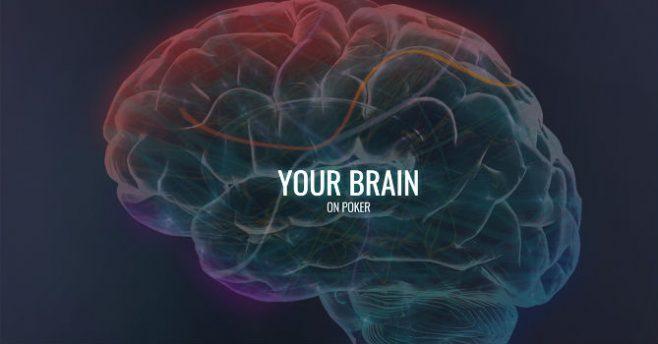 cervello poker pro gamer