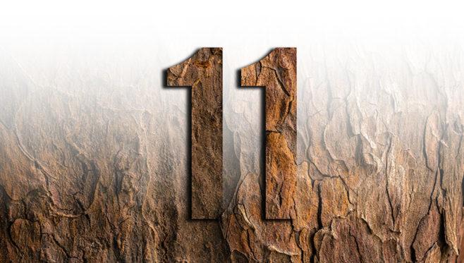 NUMERO11